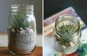 Cute Jar Decorating Ideas Brilliant Ideas For Mason Jar Paint 100 Diy Mason Jar Crafts 12