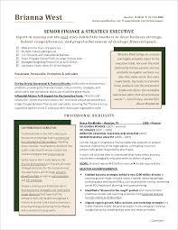 financial executive resume sample resume exampl cfo resume cfo resume cfo resume