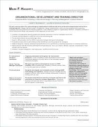 Instructional Designer Resume Luxury Beautiful Designer Resume