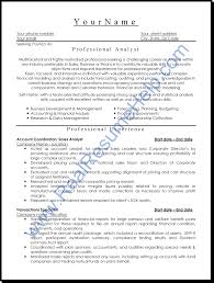 Examples Of Resumes Sample Professional Resume Curriculum Vitae