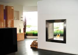 bioethanol fireplace insert double sided 650db