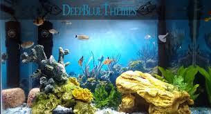 Aquarium Background Pictures Aquarium Image Gallery Deepbluethemes Com