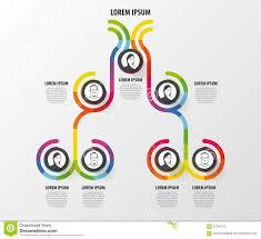 Organization Chart Infographics Design Infographics Vector