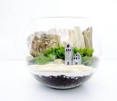 Decorative Terrariums by Patricia Buzo Doodle Bird Etsy