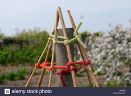 Brig Gebliebene Wolle Verwendet Um Garn Zu Binden Bambus