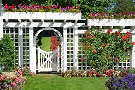 10 fun diy garden trellis ideas to try
