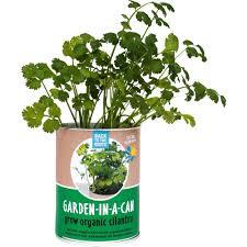 Indoor Kitchen Herb Garden Kit Kitchen Herb Garden Kit Decor Ideas A1houstoncom