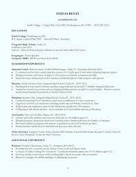 49 Fresh Sap Fico Freshers Resume Format Awesome Resume Example