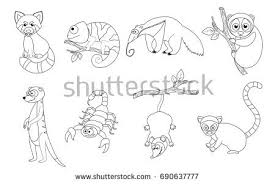 Small Picture Coloring Book Page Preschool Children Colorful Stock Vector