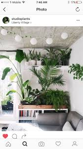 Looks like the perfect place for a plant celebration!