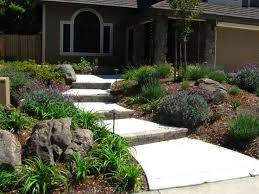 Small Picture Get Paid to Not Plant Grass Drought resistant plants Yard