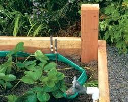 4x8 raised bed vegetable garden layout. 4x8 Raised Garden Bed Bird Netting Hose 4 X 8 Vegetable Layout