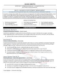 Cio Resume Examples 2017