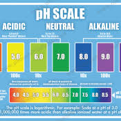 Ph Chart Alkaline Ph Balance And Alkaline Level Charts Keep Track Of Your
