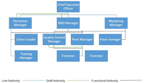 Interior Design Organizational Chart Types Of Business Organizational Structures Veracious Org