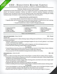 Job Resume Definition Stunning Executive Resume Writing Tips Resume Sample Page 24 Resume Definition