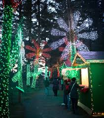 Silverton Oregon Garden Lights Heres The Best 13 Places In Oregon To See Christmas Lights