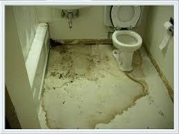bathroom leak repair