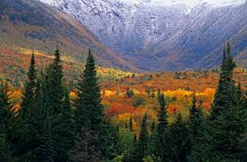 Image result for fall scenery in the white mountains of NH