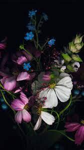 ad15-wallpaper-apple-ios8-iphone6-flower