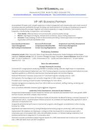 Director Resume Examples Best Of Executive Resume Templates Free C Level Executive R Luxury C Level
