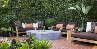 view in gallery privacy hedge created by photinia trees