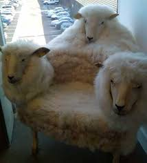 crazy office chairs. This Begins To Unfold In My Brain. Customer - \ Crazy Office Chairs R
