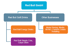 Gopro Organizational Chart Red Bull Organizational Structure Research Methodology