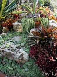 Small Picture 863 best Simply Succulents images on Pinterest Succulents garden