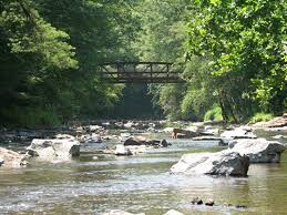 Loyalsock Creek Hatch Chart Pennsylvanias Most Beautiful Streams Pennlive Com