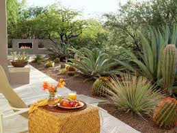 Small Picture How to Give Your Desert Backyard Southwestern Flair The Garden Glove