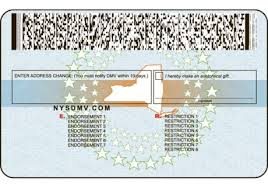 The Nytimes New Evolution Driver Graphic License 's York Of com 75nHxgHq8