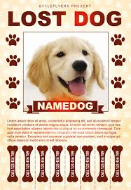 how to make lost dog flyers lost dog poster template free lovely pet sitter flyer template