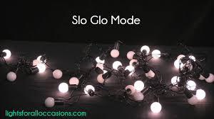 Mini Globe Lights Led Mini Globe String Lights 50 Bulbs 17 5 Ft Black Wire Multi Function Warm White