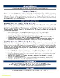 It Consultant Resume Sample Download Beautysultant Resume Examples