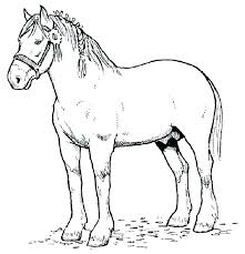 Cartoon Horse Coloring Pages Free Together With Printable For Kids