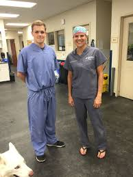 news posts cincinnati country day will swinton 17 had a successful experience when he spent two days shadowing alum and parent dr susanna schwartz 93 a veterinary surgeon for medvet