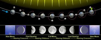 Do Lunar Phases Actually Affect The Bite