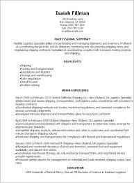 Career Focus For Resume Impressive Resume For Logistics Job