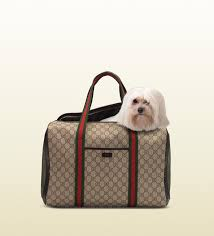 Designer Dog Carrier Gucci Dog Bag Designer Dog Carriers Dog Bag Dog Carrier