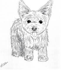 While a toddler or preschooler might scribble all over a coloring sheet, with no respect for the. Yorkie Puppy Coloring Pages To Print Coloring Pages Puppy Coloring Pages Dog Coloring Page Coloring Pages