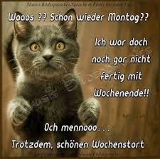Schönen Montag Wünschen Bilder Und Sprüche Für Whatsapp Und