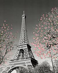 Eiffel Tower Home Decor Accessories Paris Eiffel Tower Blossoms Decorative Photography Travel City 69