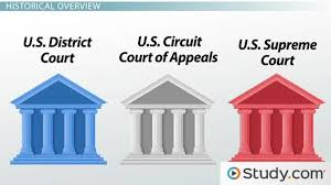 United States Court System Flow Chart The 3 Levels Of The Federal Court System Structure And Organization