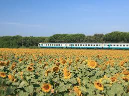 Italian Trains Intercity