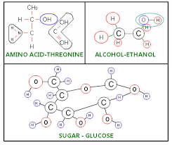 Functional Groups Definition Types List Of Functional Groups
