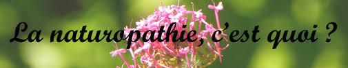"""Résultat de recherche d'images pour """"naturopathie"""""""