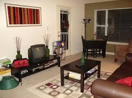 College Living Room Decorating Ideas Custom Design Inspiration
