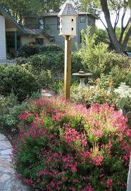 Texas Shade Garden Design 38 The Best Central Texas Landscaping Ideas For Garden