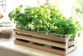 kitchen herb pots kitchen herb window planter box wooden trough metal plant pots herb kitchen herb kitchen herb pots